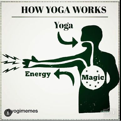 yogimemes